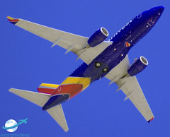 Southwest Airlines 737-7H4 [N426WN] (aircraftvideos) Tags: avgeek airbus airplane airport aircraft airliner avhooker aviation a319 a380 a320 a321 a318 a300 a340 a388 a332 a333 a330 ads kads dal kdal dfw kdfw wn swa military 767 77e 777 747 744 787 757 737 727 789 788 772 707 77l 77f 773 738 77w 748 762 74f 734 764 733 763 721 748i 722 texas tr traffic boeing