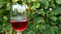 Weindorf Selzen - Rosé