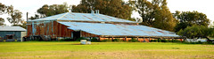 Old Yullundry Woolshed Pano (Darren Schiller) Tags: yullundry yeoval newsouthwales shed shearing wool farming rural old historic architecture galvanisediron corrugatediron rustic