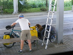 even the dog needs a passport when Crossing from Serbia / Srbija near Sid (seanfderry-studenna) Tags: border crossing sid serbia republic srbija europe european place outdoor outside vacation travelling travel public dog bicycle animal man cyclist