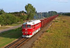 628 001 H-START (M62 001 MV) (...sneken a vonat) Tags: 001 160922 628 628001 628001start bahn szarvas cukorrpa cukorrpaszezon2016 eisebahn line125 luganszk m62 m62001 mav mozdony mv rail railway szergej tehervonat train tren trenur trenuri vaggonstypeeas vast vlacik vlak vlaky vonat zeleznice locationszarvas 1csabacsud2016