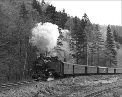 99 1783-2 (RhinopeteT) Tags: railway steam east german