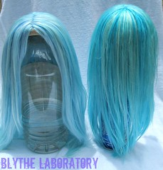 Light blue, from the front (Blythe Laboratory) Tags: blue zaloa blythereroot blythelaboratory alpacareroot