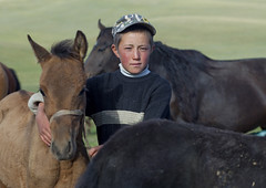 Boy In The Middle Of Colts, Jaman Echki Jailoo Village, Song Kol Lake Area, Kyrgyzstan (Eric Lafforgue) Tags: boy people male childhood animal horizontal youth standing mammal person one kid asia exterior cap pasture innocence colts centralasia kyrgyzstan humanbeing oneperson colorphoto headgear kyrgyzrepublic kirghizistan kirgistan lookingatcamera waistup 9773 kirghizstan kirgisistan    quirguizisto songkollakearea jamanechkijailoo
