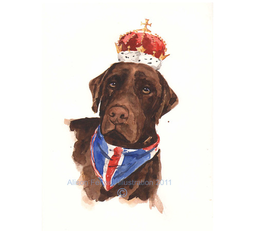 dog king labrador