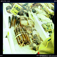 "Razor Clams in Hong Kong • <a style=""font-size:0.8em;"" href=""http://www.flickr.com/photos/40100768@N02/7176385377/"" target=""_blank"">View on Flickr</a>"