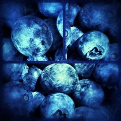 Blueberries (SarasUniverse) Tags: blue fruits season farmersmarket fresh local californianative bluberries