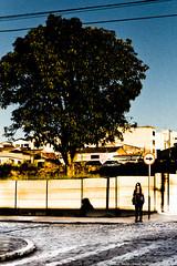 5 (Junior AmoJr) Tags: street color art sol arquitetura brasil photoshop canon sãopaulo chuva pb paisagem junior cor snapfish gettyimages lightroom t3i atibaia photostreet itsnoon gettyimagesandtheflickrcollection gettyimagesbrazil amojr junioramojr crowdart oliveirajunior riafestival