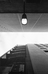Leica M2_X-TRA400_888@f5.6 edit (No Donuts For You) Tags: leica test color film japan analog 35mm print shinjuku fuji br superia goggles rangefinder negative 400 handheld roll epson manual 135 m2 f28 xtra summaron leitz v500 fujifillm 35cm