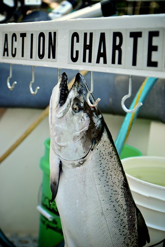 Action Charter
