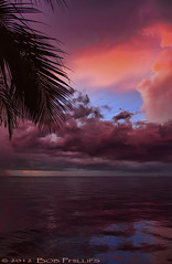 Bokeelia Sunset (tropicdiver) Tags: sunset gulfofmexico clouds palmtrees thunderstorm pineisland bokeelia