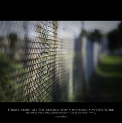120 Quotes project | Quote 107 (Musaad (CJ)) Tags: blur green grass peace dof bokeh shallow f12