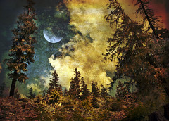 Started playing around again (h_roach) Tags: moon clouds woods explore fantasy textureart magicunicornverybest