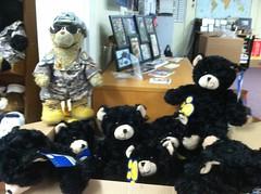 071912 General Sarge Fundraiser Prep