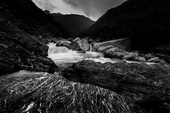 Rampage (Gift of Light) Tags: newzealand river day rock line solid nature landscape blackandwhite light shadow flow water tree forest woods sonyalpha sony alpha sonyvariotessartfe1635mmf4zaoss variotessar t fe za oss 1635mm f40 16354 41635 sonya7rii sonya7rmkii a7rmkii a7rii