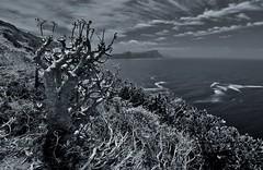 False Bay (RWGrennan) Tags: false bay cape point capetown southafrica africa south monochrome mono blackandwhite bw peninsula tablemountainnationalpark water sky clouds mountains view nature wide angle 2014