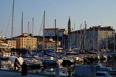 Piran (5) / Eslovenia / Slovenia (Ull mgic) Tags: piran istria eslovenia slovenia port adriatic adritico mar torre campanar campanario nucliantic edifici cases fuji xt1
