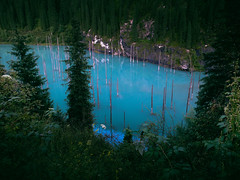 Turquoise Water Lake (rm005759) Tags: vsco vscofilm summer travel water lake mountains wood forest trees spruce nature shotoniphone