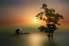 Moody ((ID's)) Tags: light sunset sea art artwork fineart tree colors