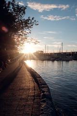 The Seawall (conradolson) Tags: falsecreek vancouver bc sunset northamerica canada flare coolsky boat britishcolumbia ca