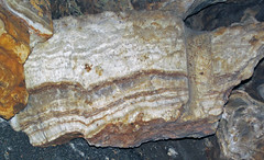 Travertine speleothem cross-section (Luray Caverns, Luray, Virginia, USA) 5 (James St. John) Tags: cave caves luray caverns virginia travertine speleothem crosssection cross section