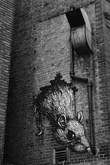 Roa_1383 New Goulston street London (meuh1246) Tags: streetart londres london roa newgoulstonstreet animaux rat shoreditch spitafields