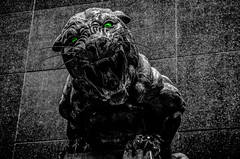 black panther statue (AgFineArtPhotography.com) Tags: cat hunter scary action afc aggression aggressive america animal bw bank black blackandwhite blackandwhitephotography bowl carnivorous carolina champions charlotte classic dangerous ear east eye fearless feline game histor historic k9 majestic nfc nfl nine north panthers players power stadium statue strength strong super symbol team teeth timeless west white wild wildlife green eyes