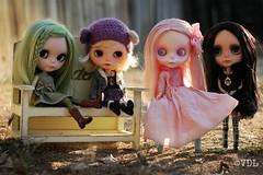 My custom girls ~ (voo_doolady) Tags: garden bench dolls graves ash blythe custom couture mab moshimoshi dollicious ateliernishasha everangellilycustom hazelmeimeicustom dahliaroseigsirenitacustom sparrowhappibugcustom