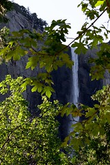 Bridal Veil Falls.jpg (Milieux Photography) Tags: travel mountain green nature water leaves forest landscape waterfall yosemite highdefinition yosemitenationalpark bridalveilfalls hdr yosemitevalley 2011