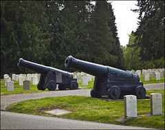 Old Ironsides Cannons (NoJuan) Tags: cemetery pen memorial display headstones olympus artillery muzzleloader cannons oldironsides ep1 ussconstitution carronade kingcountywa 1442mmolympus urbanartillery