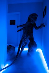 ALIEN (Vermin Inc) Tags: mist movie mask nest pentax alien ridleyscott australia melbourne victoria hallway gloves scifi horror eggs sciencefiction dryice hrgiger prometheus facehugger k7 stagedphotography ledstriplighting justpentax custommadebodysuit custommadeeggs gigerwouldbeproud