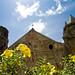 Miag-ao Church