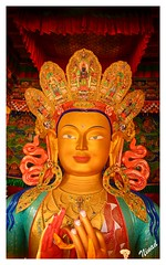 Buddha in the Thiksey Monastery (cantfindninad) Tags: india mountains tourism clouds buddha monastery valley leh ladakh thiksey jammukashmir incredibleindia