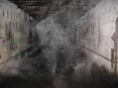 2012-050426A (bubbahop) Tags: mist fog ruins thirdreich nazis wwii poland eerie worldwarii paranormal wolfs hitlers worldwar2 2012 lair hqs bunkers okh ketrzyn wolfsschanze mamerki kętrzyn mauerwald europetrip25