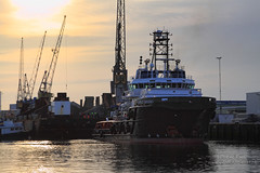 Carlo Magno (Peet de Rouw) Tags: holland rotterdam ship offshore tugboat tug scheepvaart peet waalhaven carlomagno portofrotterdam denachtdienst havenfoto peetderouw