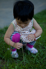 Daughter holding a dandelion (Eason Q) Tags: china people horizontal outdoors photography holding day child looking dandelion luck sideview oneperson wishing headandshoulders adolescence casualclothing 34years colorimage focusonforeground onegirlonly beijing,blowing childrenonlygettychinaq2