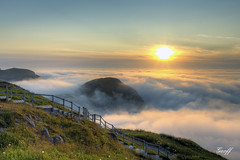 Signal Hill (gwhiteway) Tags: travel summer canada tourism nature fog sunrise newfoundland walking view hill steps foggy stjohns hills nl signal vidi quidi TGAM:photodesk=yourcanada2012