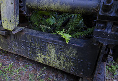 Willamette Iron and Steel Works (rschnaible) Tags: california statepark ca old northerncalifornia oregon vintage portland moss forestry antique or logging equipment abandon norcal ferns steamengine eureka steamdonkey forthumboldt irondonkey nikkor1024mm