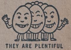They Are Plentiful (Namey McNamerson) Tags: egg eggs