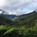 Il lussureggiante percorso, simile al Camino de la Muerte boliviano, che porta a Mocoa
