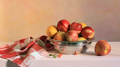 A Little Afternoon Delight (panga_ua) Tags: summer stilllife art fruit composition canon spectacular wooden artwork artistic availablelight july ukraine poetic lemons creation imagination peaches natalie setting 169 arrangement tabletop nectarines bodegon naturemorte panga artisticphotography rivne naturamorta warmtones artphotography richcolors rowanberries sharpfocus afternoondelight stainlesssteelbowl whitetabletop  nataliepanga pastelsbackground alittleafternoondelight redchequeredtowel