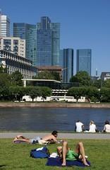 Frankfurt, ein heißer Sommertag am Museumsufer (a hot summer day at the Museums Embankment) (HEN-Magonza) Tags: frankfurt museumsufer museumsembankment main skyper gallileo deutschebank hochhaus highrisebuilding skyline hessen hesse deutschland germany