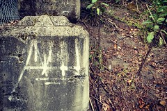 Atak (Psychedelic Wardad) Tags: portland graffiti dethkult dklt nsf bf atak
