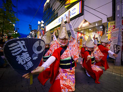 Nihoren @ Koganei Awaodori 2016 (Apricot Cafe) Tags: awaodori japan kimono koganeiawaodori musashikoganei nihoren sigma1224mmf4556iidghsm tokyo dancing festival groupofpeople groupperformance instruments outdoors parading traditionalclothes traditionalfestival koganeishi tkyto jp img644823