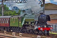 "The "" Flying Scotsman"" (Pensioner Percy, very slow at the moment) Tags: flyingscotsman d7200 carlisle carlislestation nikon18140mm steam nigelgresley lner britishrailways railwaytouringcompany train engine 60103 nikkor"