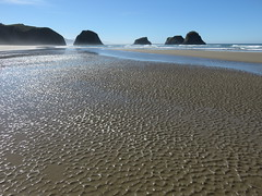 beach braille for days (carolyn_in_oregon) Tags: oregon pacificocean ecolastatepark coast crescentbeach