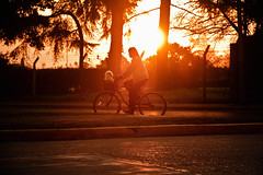 (JuanFL) Tags: canon eos rebel 550d t2i buenosaires argentina streetphotography street urban calle ciudad city lights shadows sol sun sunset atardecer bicicleta perro mascota bike rayos luz contraluz