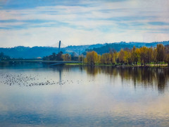 A Moment of Tranquility (Colormaniac too) Tags: river mondego portugal autumn peaceful tranquility landscape colorful europe coimbra nature distressedtextures seimalchemistactions