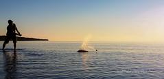 Lake Superior Evening Fun (1 of 1) (amndcook) Tags: keweenaw outdoors sunset water lakesuperior michgan nature reflection rocks shoreline skippingstones splash upperpeninsula