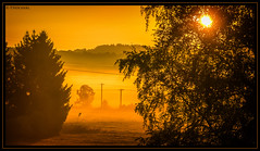 summer sunrise (P.Hcherl) Tags: 2016 nikon d5300 tamron tamron16300mmf3563diiinafvcpzdmacro sonnenaufgang sunrise dawn yellow gelb orange weiden oberpfalz bayern deutschland germany bavaria upperpalatinate
